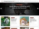 Chatgraindamour.com
