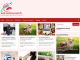 Web Commerçant