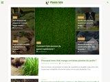 Plante-info.com